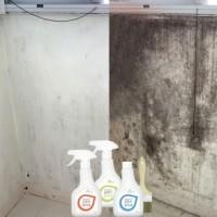 1+1+1 욕실 벽 베란다 곰팡이제거제 방지