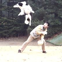 ATS반려동물훈련학교