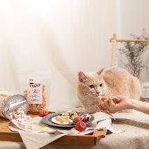 고양이간식 대표브랜드 찹앤찹