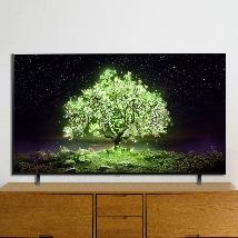 LG 올레드TV 공식판매점