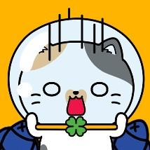회원초저가 고양이쇼핑몰 앱스