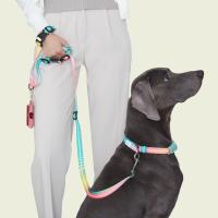 [스페이스독] 대형견 강아지 충격완화 목줄