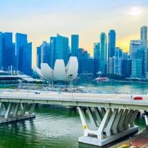 싱가포르 전문 래프트앤컴퍼니